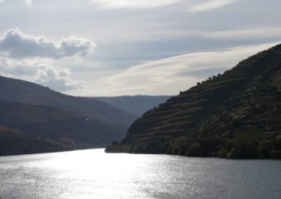 13. Vallée du Douro et Pinhao - Les Mollalpagas en cavale (35)