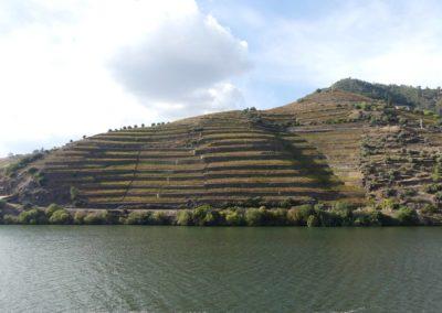 13. Vallée du Douro et Pinhao - Les Mollalpagas en cavale (39)