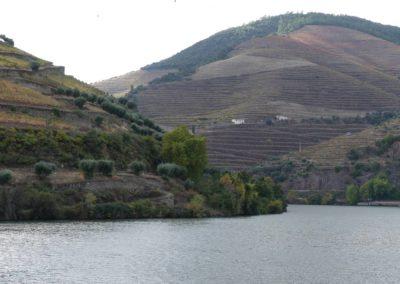 13. Vallée du Douro et Pinhao - Les Mollalpagas en cavale (5)