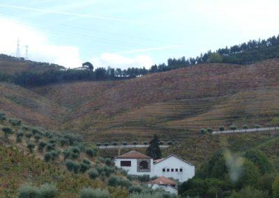 13. Vallée du Douro et Pinhao - Les Mollalpagas en cavale (54)