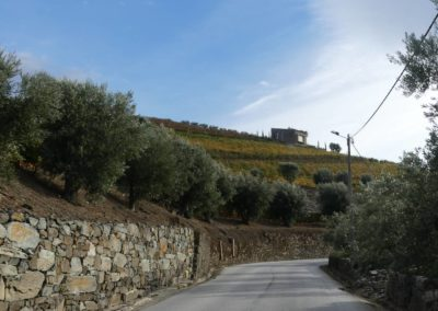 13. Vallée du Douro et Pinhao - Les Mollalpagas en cavale (68)