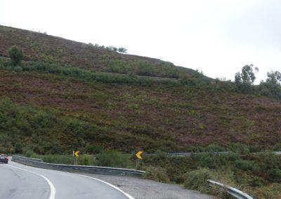15. route vers Amarante - Les Mollalpagas en cavale (18)