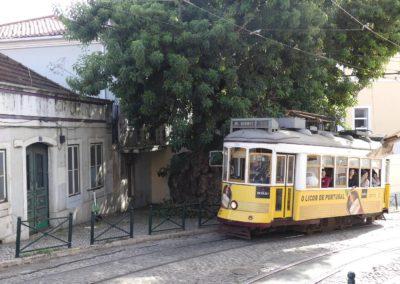 26. Lisbonne - Les Mollalpagas en cavale (135)