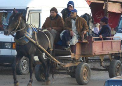 41. Ksar El Kebir - Les Mollalpagas en cavale (4)