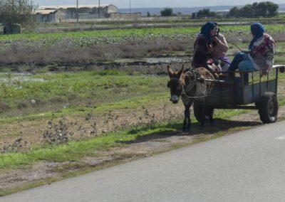 42. Route vers Casablanca - Les Mollalpagas en cavale (16)