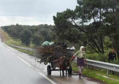42. Route vers Casablanca - Les Mollalpagas en cavale (21)