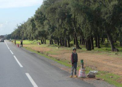 42. Route vers Casablanca - Les Mollalpagas en cavale (30)