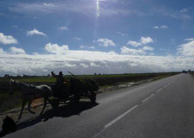 42. Route vers Casablanca - Les Mollalpagas en cavale (9)