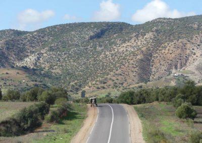 44. Route vers Essaouira - Les Mollalpagas en cavale (125)