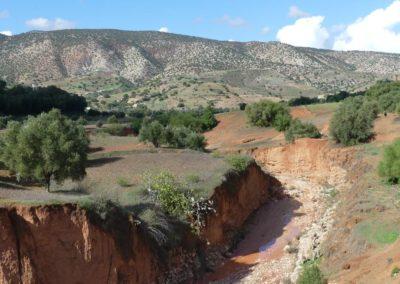 44. Route vers Essaouira - Les Mollalpagas en cavale (130)