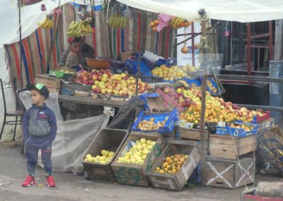 44. Route vers Essaouira - Les Mollalpagas en cavale (19)
