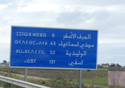 44. Route vers Essaouira - Les Mollalpagas en cavale (9)