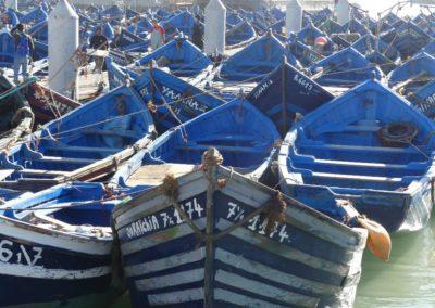 45. Essaouira - Les Mollalpagas en cavale (10)