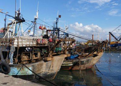 45. Essaouira - Les Mollalpagas en cavale (25)