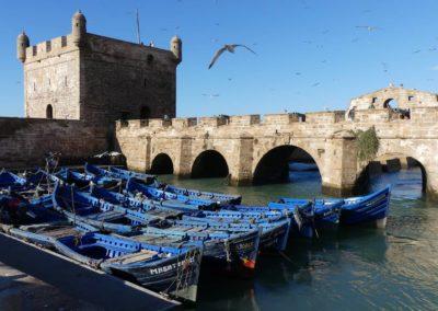 45. Essaouira - Les Mollalpagas en cavale (50)