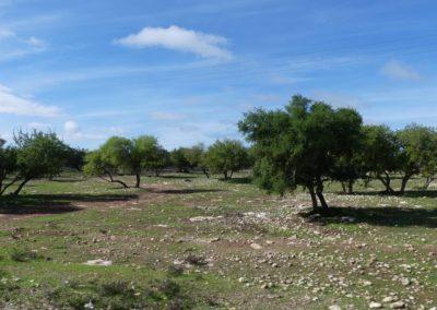 46. Route vers Agadir - Les Mollalpagas en cavale (1)