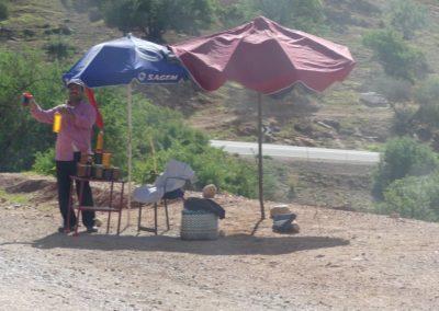 46. Route vers Agadir - Les Mollalpagas en cavale (26)