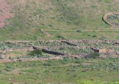 53. Route vers Foum Assaka - Les Mollalpagas en cavale (52)