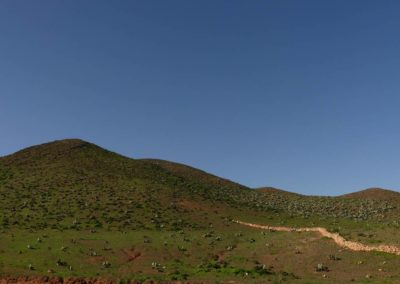55. Route vers oasis de Tighmert - Les Mollalpagas en cavale (1)