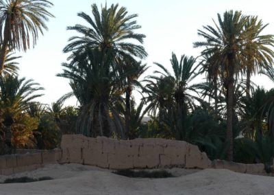 56. Oasis de Tighmert - Les Mollalpagas en cavale (34)