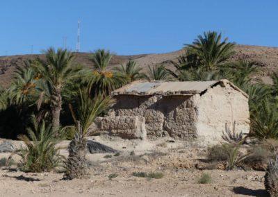 59. route vers Amtoudi - Les Mollalpagas en cavale (13)