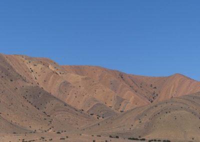 61. Route vers Tafraoute - Les Mollalpagas en cavale (23)