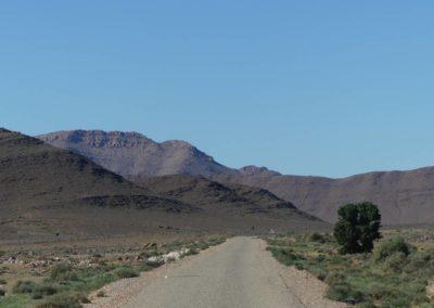 61. Route vers Tafraoute - Les Mollalpagas en cavale (25)
