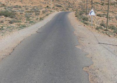61. Route vers Tafraoute - Les Mollalpagas en cavale (33)