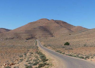 61. Route vers Tafraoute - Les Mollalpagas en cavale (38)