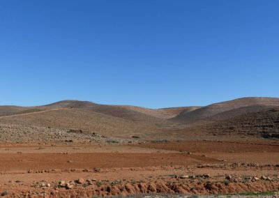 61. Route vers Tafraoute - Les Mollalpagas en cavale (54)