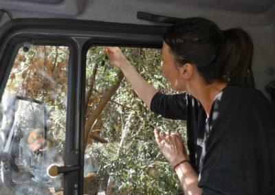 65. Route vers Tata - Les Mollalpagas en cavale (4)