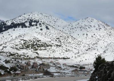 101. Route vers Osios Loukas - Les Mollalpagas en cavale (11)