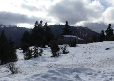 101. Route vers Osios Loukas - Les Mollalpagas en cavale (20)