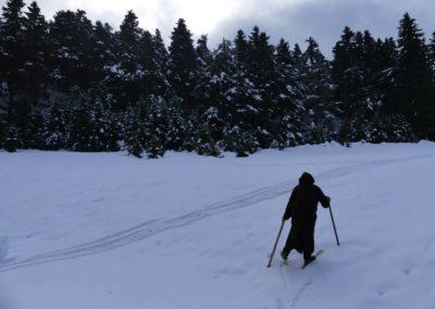 101. Route vers Osios Loukas - Les Mollalpagas en cavale (27)