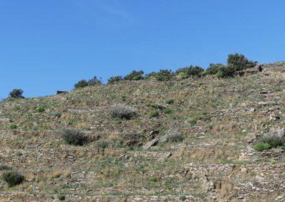 88. Péninsule du Magne - Les Mollalpagas en cavale (63)