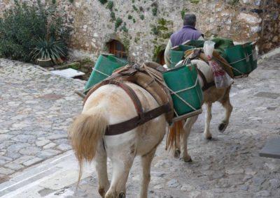 89. Monemvassia - Les Mollalpagas en cavale (112)
