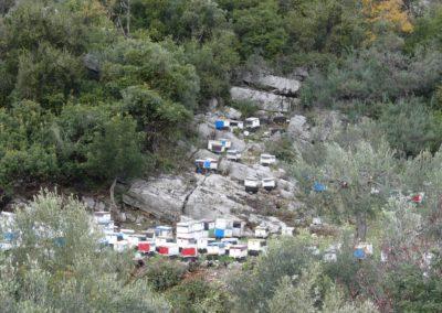 90. Route vers Mycènes - Les Mollalpagas en cavale (87)