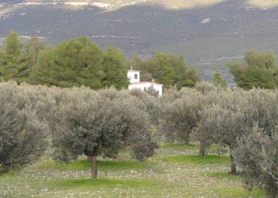 94. Didyma - Les Mollalpagas en cavale (8)