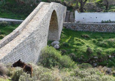 95. Hydra - Les Mollalpagas en cavale (166)