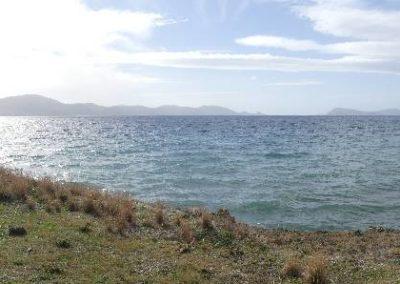 96. Route vers presqu'île de Méthana - Les Mollalpagas en cavale (7)