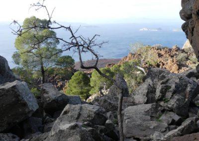 97. Presqu'île de Méthana - Les Mollalpagas en cavale (28)