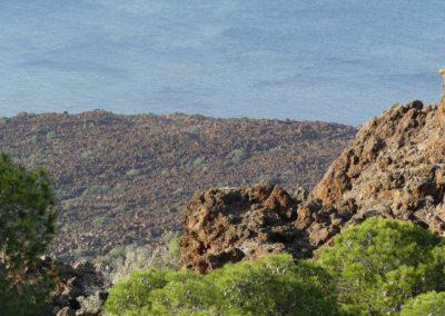 97. Presqu'île de Méthana - Les Mollalpagas en cavale (33)