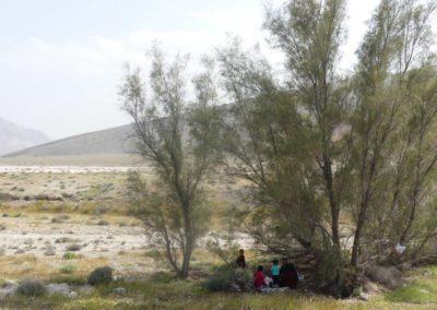 139. Route vers Qeshm - Les Mollalpagas en cavale (19)