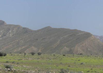 139. Route vers Qeshm - Les Mollalpagas en cavale (22)