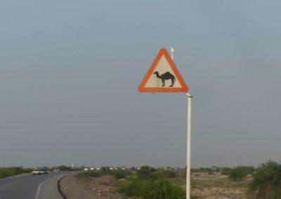 139. Route vers Qeshm - Les Mollalpagas en cavale (44)