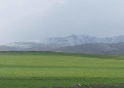 153. Turkménistan - Les Mollalpagas en cavale (12)