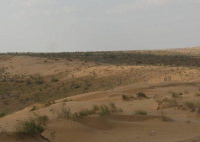 153. Turkménistan - Les Mollalpagas en cavale (174)