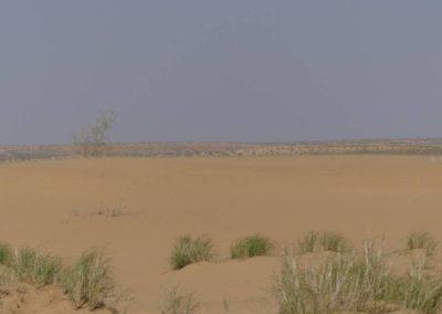 153. Turkménistan - Les Mollalpagas en cavale (368)