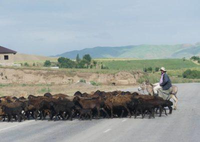 163. de la frontière à Hulbuk - Les Mollalpagas en cavale (89)