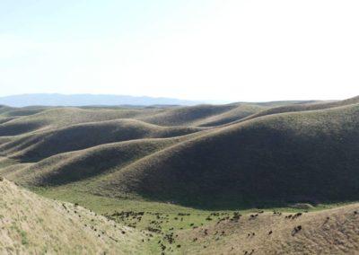 163. de la frontière à Hulbuk - Les Mollalpagas en cavale (94)